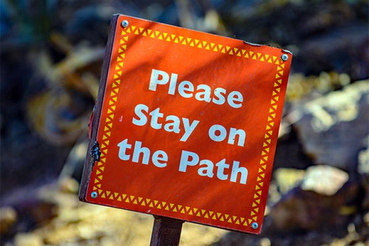path-blog